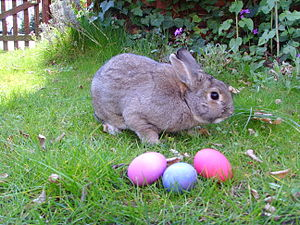 Does Perpetuating The Easter Bunny's Existence Make Me ALiar?