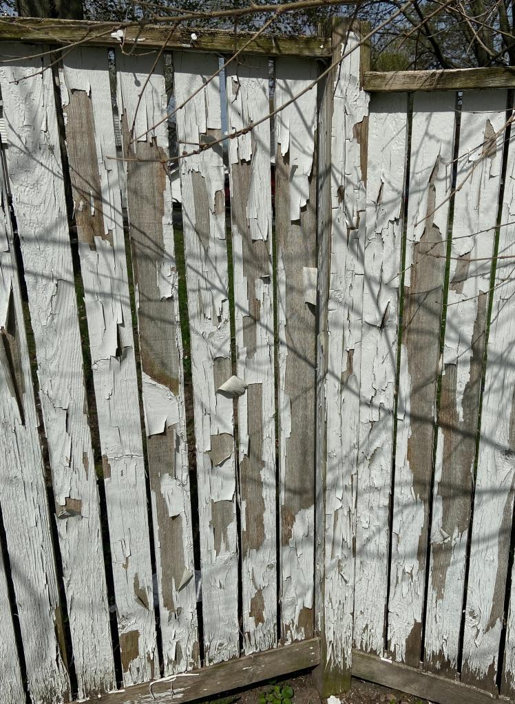 peeling fence